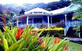 Nutmeg Grove - Accommodation Daintree