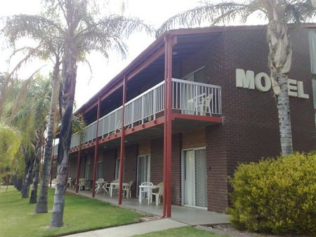 Barmera Hotel Motel - Accommodation Daintree