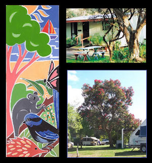 Bushland Cabins - Accommodation Daintree