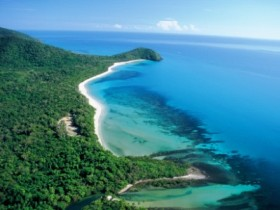 Cape Tribulation Camping - Accommodation Daintree