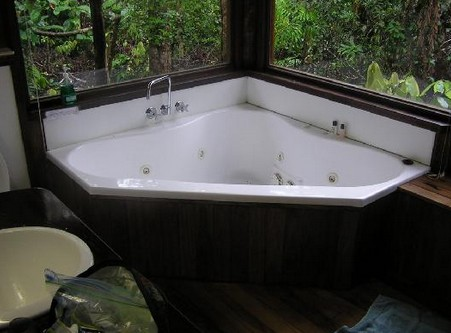 The Canopy Rainforest Tree Houses and Wildlife Sanctuary - Accommodation Daintree