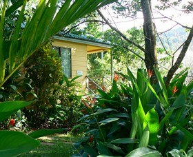Daintree Valley Haven - Accommodation Daintree