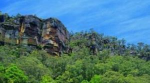 Arundel of Kangaroo Valley - Accommodation Daintree