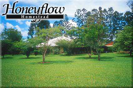 Honeyflow Homestead - Accommodation Daintree