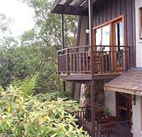 Studio Cottages Romantic Hideaway - Accommodation Daintree