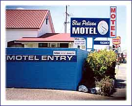 Blue Pelican Motor Inn - Accommodation Daintree