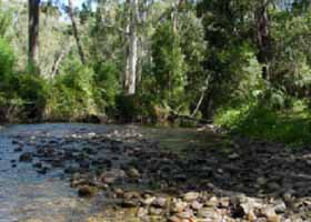 River Rest Country Cottage - Accommodation Daintree