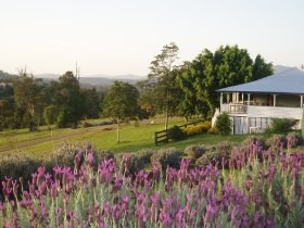 Blue Ridge Lavender Farm And Retreat