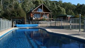 Karoonda Olive Grove Retreat at Mt Buffalo Olives - Accommodation Daintree