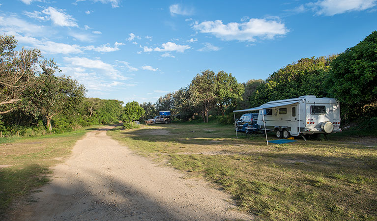 Racecourse Campground - Accommodation Daintree