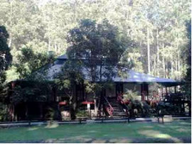 Barrington Guest House - Accommodation Daintree