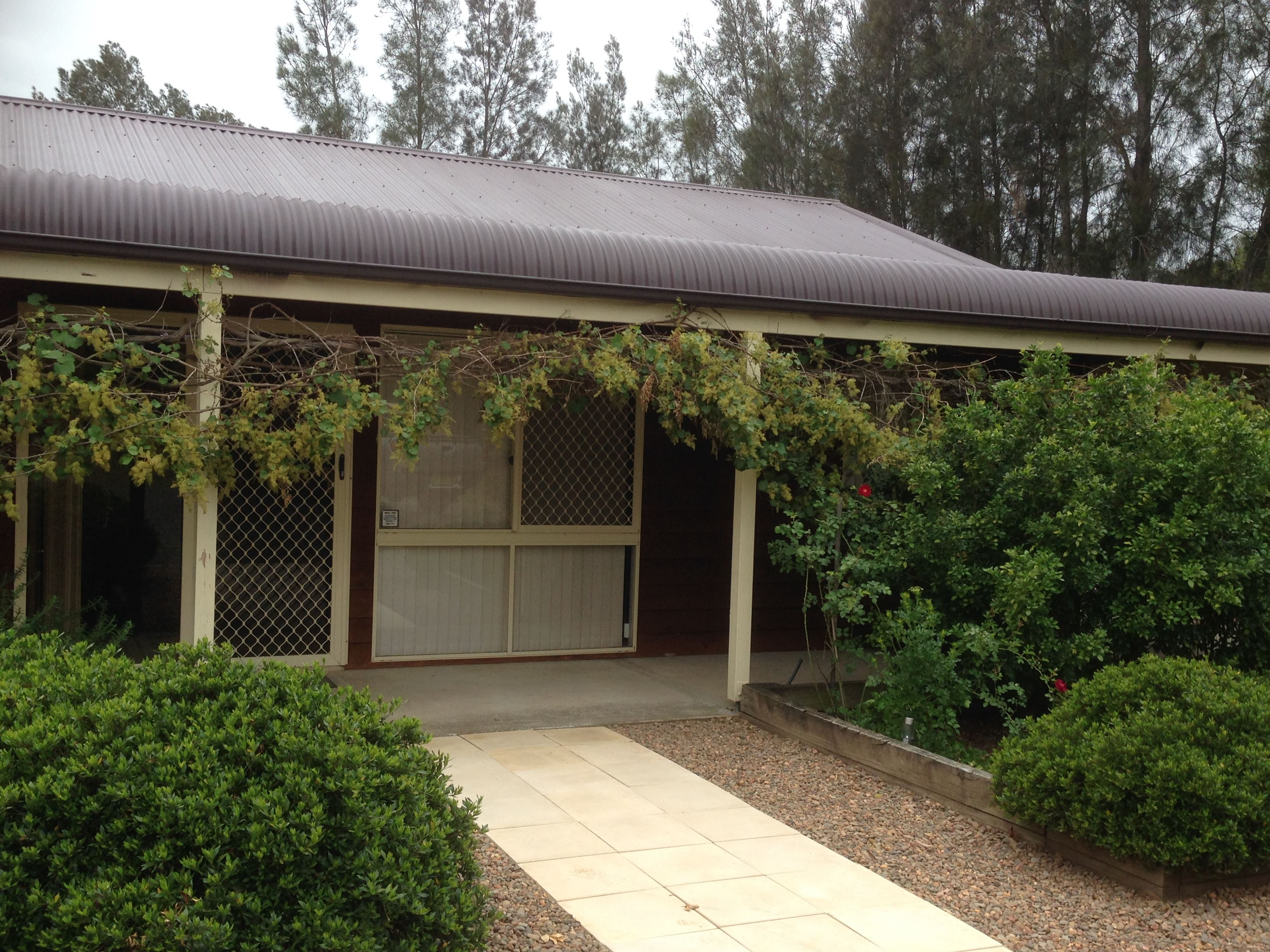 Mount Clunie Cabins - Accommodation Daintree