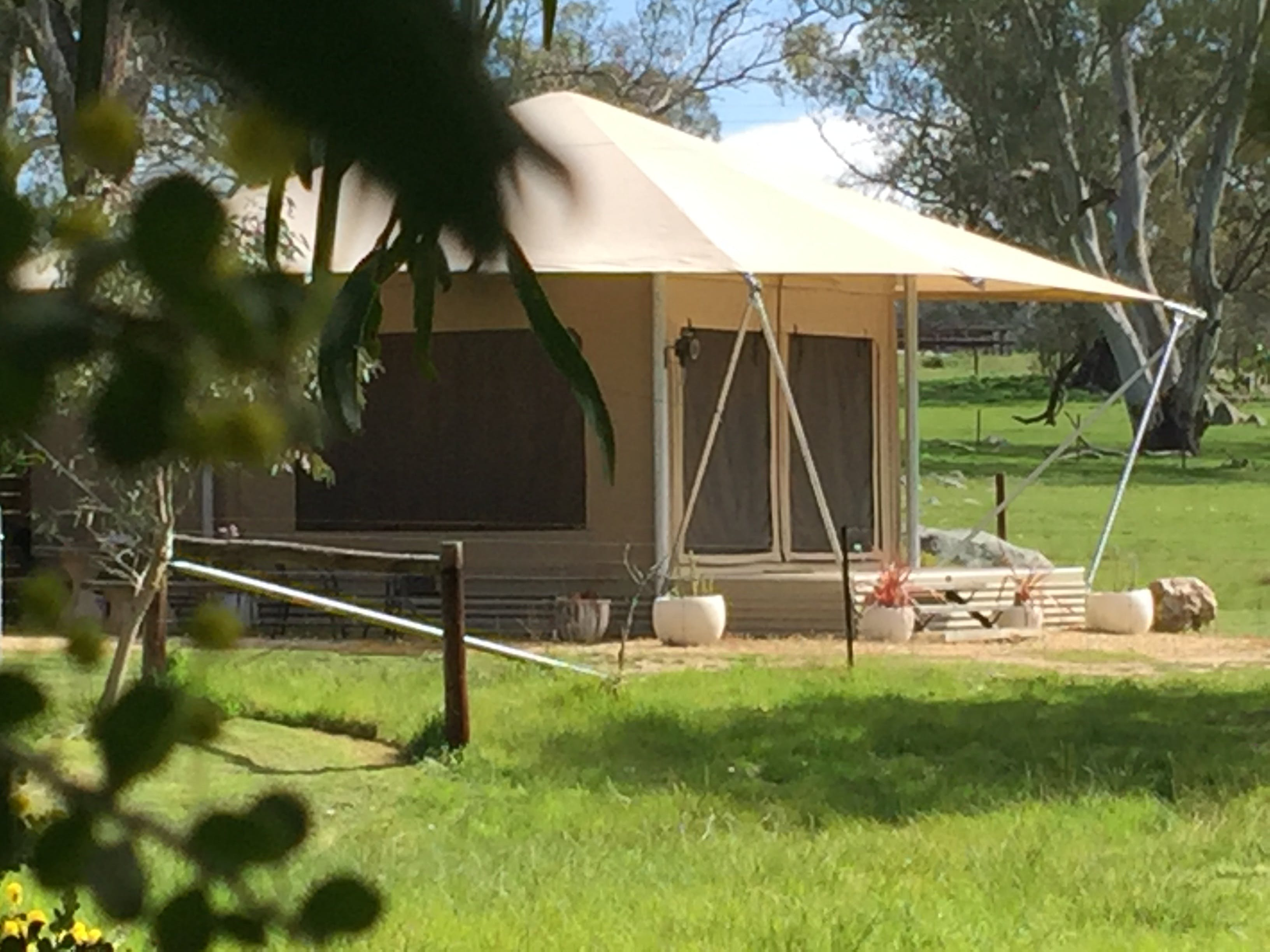 Boongarrie Luxury Tent - Accommodation Daintree
