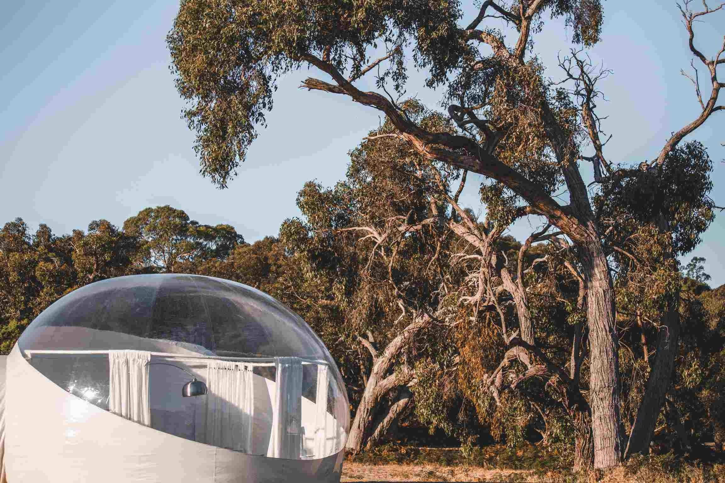 Coonawarra Bubble Tents - Accommodation Daintree