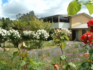North East Restawhile Bed and Breakfast - Accommodation Daintree