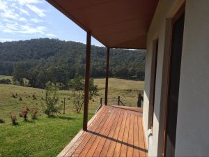 Highland Cattle Farm Stay - Accommodation Daintree