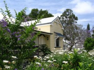 Aynsley Bed and Breakfast - Accommodation Daintree