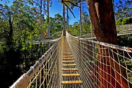 Thunderbird Park - Accommodation Daintree