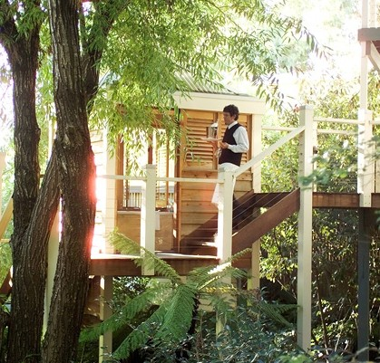 Salus Spa at the Lake House - Accommodation Daintree