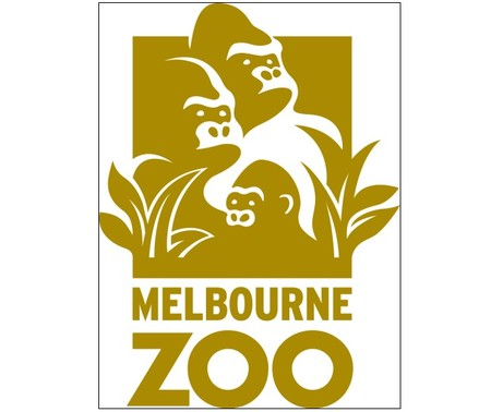 Melbourne Zoo - Accommodation Daintree