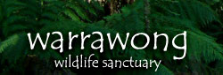 Warrawong Wildlife Park - Accommodation Daintree