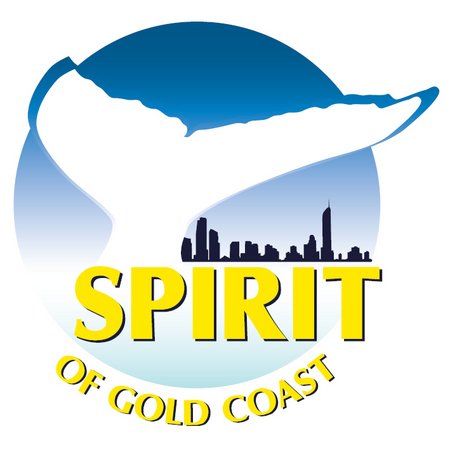 Spirit of Gold Coast Whale Watching - Accommodation Daintree