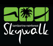 Rainforest Skywalk - Accommodation Daintree