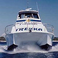 Sunshine Coast Fishing Charters - Accommodation Daintree