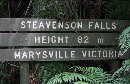 Stevensons Falls - Accommodation Daintree