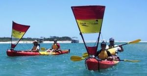 Kayak Noosa - Accommodation Daintree
