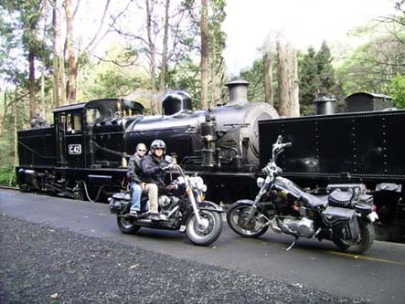 Andy's Harley Rides - Accommodation Daintree
