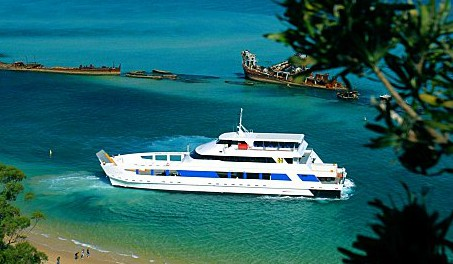 Queensland Day Tours - Accommodation Daintree