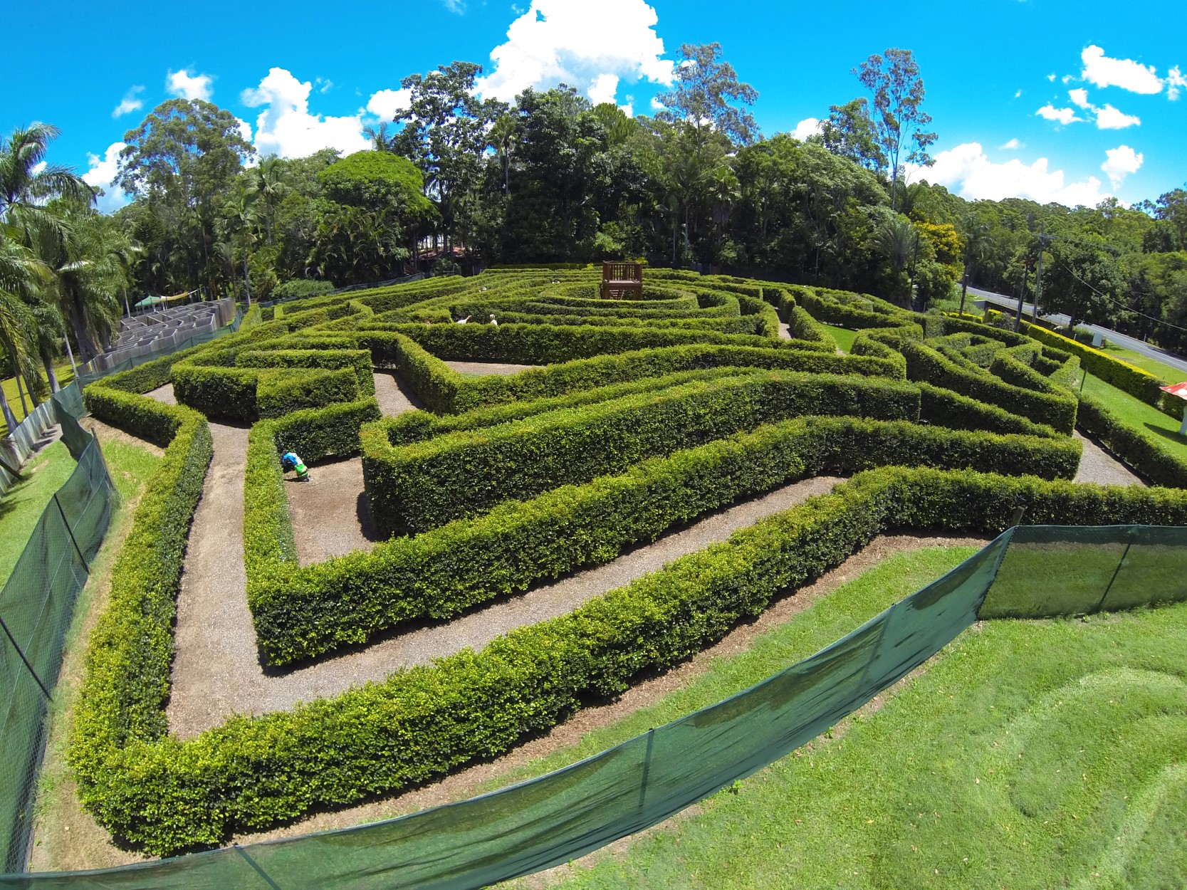 Bellingham Maze - Accommodation Daintree