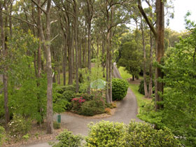 Mount Lofty Botanic Garden - Accommodation Daintree