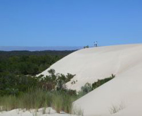 Yeagerup Sand Dunes - Accommodation Daintree