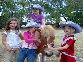 Amberainbow Pony Rides - Accommodation Daintree