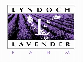 Lyndoch Lavender Farm and Cafe - Accommodation Daintree