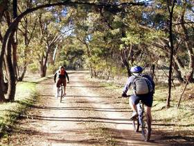 Bike About Mountain Bike Tours And Hire - Accommodation Daintree