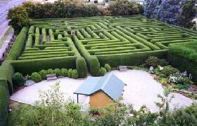 Westbury Maze and Tea Room - Accommodation Daintree