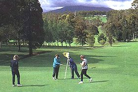 Deloraine Golf Course - Accommodation Daintree
