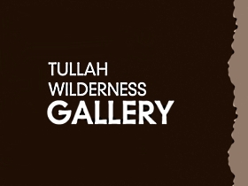 Tullah Wilderness Gallery - Accommodation Daintree