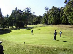Sheffield Golf Course - Accommodation Daintree
