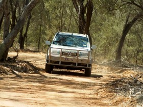 Ward River 4x4 Stock Route Trail - Accommodation Daintree
