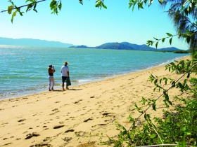Bushland Beach - Accommodation Daintree