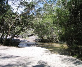 Davies Creek National Park and Dinden National Park - Accommodation Daintree