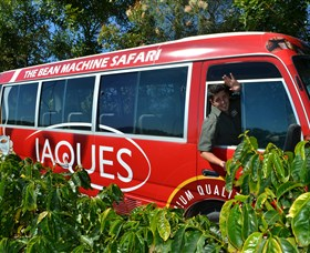 Jaques Coffee Plantation - Accommodation Daintree