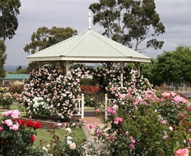 Morwell Centenary Rose Garden - Accommodation Daintree