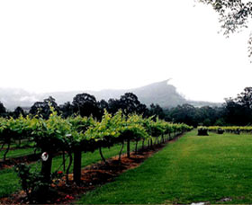 Cambewarra Estate Wines - Accommodation Daintree