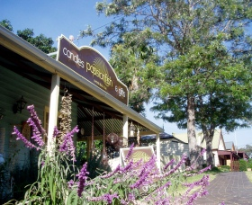 Passionfish Candles - Accommodation Daintree