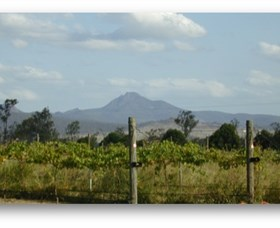 Ironbark Ridge Vineyard - Accommodation Daintree